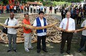 Filipina Musnahkan 5 Ton Gading Gajah Ilegal