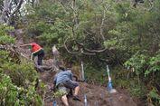 Libur HUT RI, Pendakian Gunung Gede Pangrango Masih Ditutup
