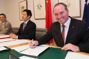 Australia Akan Ekspor Sapi ke China setelah Indonesia Kurangi Kuota