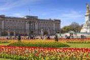 Istana Buckingham Bakal Dipugar dengan Biaya Rp 6 Triliun