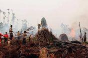 KLHK Mulai Antisipasi Kebakaran Hutan dan Lahan