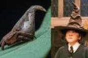 Laba-laba Unik Punya Bentuk Mirip Topi Harry Potter