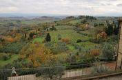 Mencicipi 'Wine' di Kastil Kuno Italia