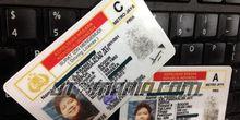 Meski Sudah Daftar SIM Online, Jangan Lupa Siapkan Ini