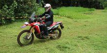 CRF250Rally, Perawakan Khas Motor Petualang