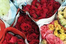 5 Tempat Wisata Serba Mawar untuk Valentine