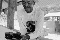 Merawat Penyu di Samas