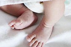Jasad Seorang Bayi Ditemukan di Sebuah Pantai di Alor