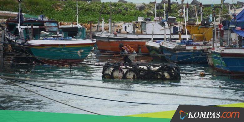 Sehari Nelayan Sadeng Dapat 10 Ton Ikan Tuna Super ...