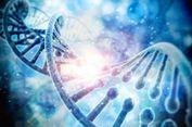 Riset Kontroversial Nyatakan 75 Persen DNA Manusia Tak Berguna