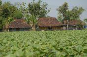 Tiga Dusun di Grobogan Belum Dialiri Listrik