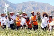 BNI Salurkan KUR untuk Petani Bawang Sembalun