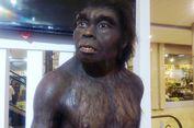 Situs Sangiran, dari Jawa Mengungkap Evolusi Dunia