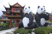7 Spot Foto yang 'Instagram Banget' di Istana Panda Taman Safari