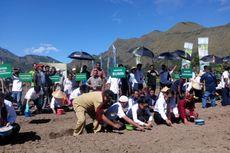 Tiga Menteri Tanam Bibit Bawang Putih di Desa Sembalun