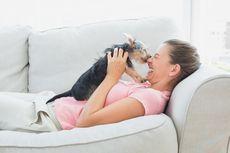 Tahukah Anda, Indera Penciuman Manusia Bisa Sebaik Anjing