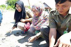 70 Tukik Penyu Lekang dan Satu Penyu Hijau Dewasa Dilepasliarkan