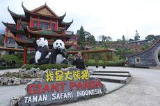 Tak Hanya Panda, di TSI Anda Bisa Lihat Hewan Langka Ini di Kandangnya