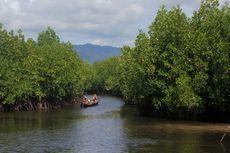 Kisah Mangrove Jakarta dan Burungnya yang Nyaris Tinggal Cerita