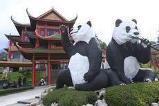 Bagaimana Cara Menuju Istana Panda di Taman Safari Cisarua?