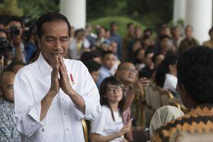 Jokowi: Kalau Enam Bulan Investor Enggak Bangun-bangun, Cabut Izinnya
