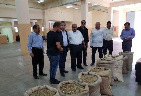 Hingga Akhir Tahun Mesir Impor 150 Kontainer Kopi Indonesia