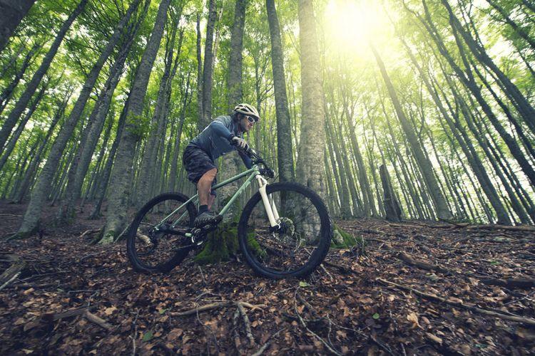 Sepeda XC dengan ban ukuran 29 inci cocok untuk kecepatan tinggi