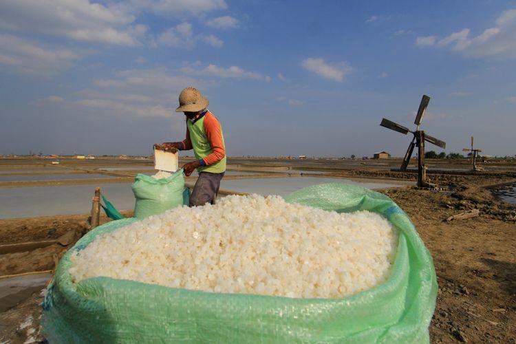 Petani memasukkan garam yang baru dipanen ke dalam karung di lahan garam Desa Santing, Losarang, Indramayu, Jawa Barat, Kamis (3/8). ANTARA FOTO/Dedhez Anggara/17.