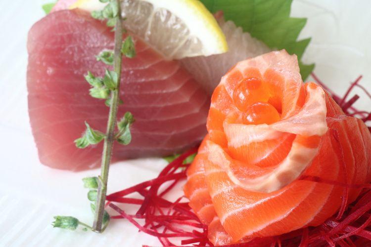 Ilustrasi daging ikan