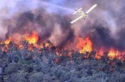 California Dilanda Kebakaran Besar, 10 Orang Tewas