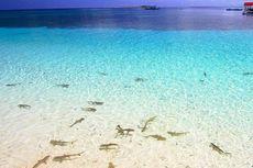 Kapan Waktu Tepat Berlibur ke Kepulauan Selayar?