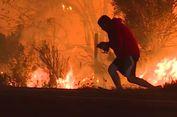 Aksi Pria Selamatkan Kelinci dari Kebakaran Hutan di LA Tuai Pujian