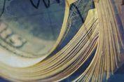 Ini yang Akan Terjadi Setelah RI Dapat Peringkat 'Investment Grade'