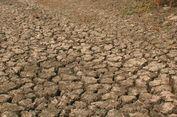 Bima Dilanda Kekeringan, 5.000 Jiwa Kesulitan Air
