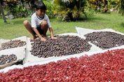 Saksikan, Pameran untuk Mengenal Pulau Banda Lebih Dekat