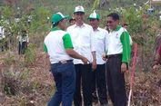 Revitalisasi Danau Rawapening, Kawasan Hulu Ditanami Ribuan Pohon
