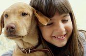 Mengapa Anjing Jadi Sahabat Terbaik Manusia? Sains Menjelaskannya