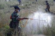 Dilema Sumba Timur Hadapi Serangan Belalang 10 Tahun Sekali