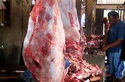 Bulog: Daging Kerbau Bukan untuk Gantikan Daging Sapi