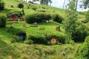 Turis Indonesia, Inilah Waktu Terbaik Liburan di Selandia Baru