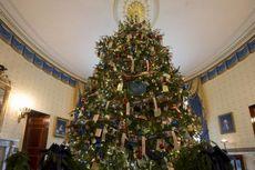 Pasokan Pinus untuk Pohon Natal di AS Mengalami Defisit