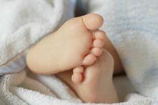Bayi Perempuan Ditemukan Menangis di Dalam Kardus Mi Instan