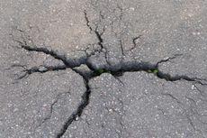 Gempa Bumi 4,6 SR Guncang Maumere