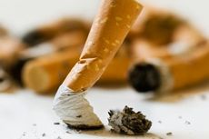 Kebijakan Kemasan Polos Rokok Rugikan Industri Tembakau Indonesia