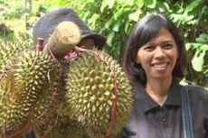 Menanti Lezatnya Durian Runtuh di Trenggalek
