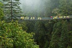 FSC Lanjutkan Program Edukasi Hutan Berkelanjutan