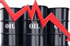Produksi OPEC dan AS Meningkat, Harga Minyak Merosot
