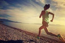 Ingin Lari Sambil Nikmati Suasana Liburan? Ikuti Ajang Ini