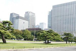 Basuki: Kalau Ibu Kota Pindah, Pasti di Kota Baru