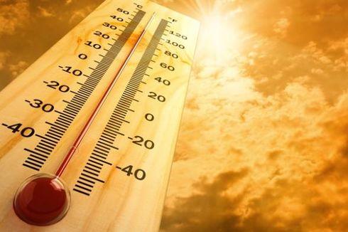 Tahun 2100, Suhu Asia Selatan Diprediksi Terlalu Panas untuk Manusia